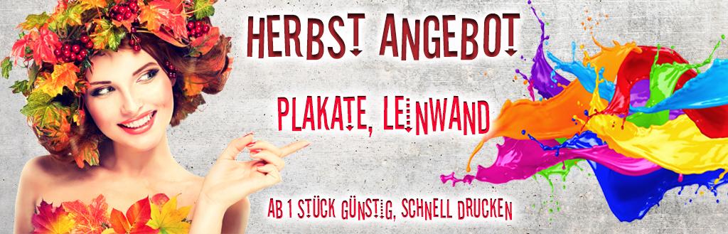 Herbst-Aktion-Rabatt-Poster-Leinwand-billig-guenstig-schnell-drucken